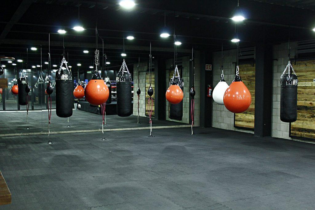 equipo para entrenar escuela de box el rey
