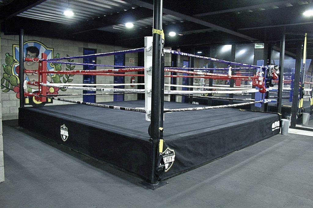 Ring de la Escuela de Box Las Arboledas EL REY